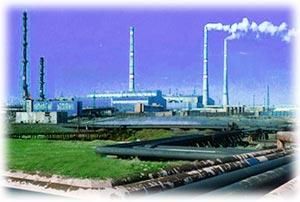 Запуск нового завода в Саратовской области