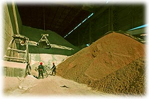 На МФБ торги по контрактам на поставку цемента